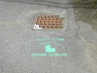 A photograph of a storm drain with a painted reminder to prevent pollution below.